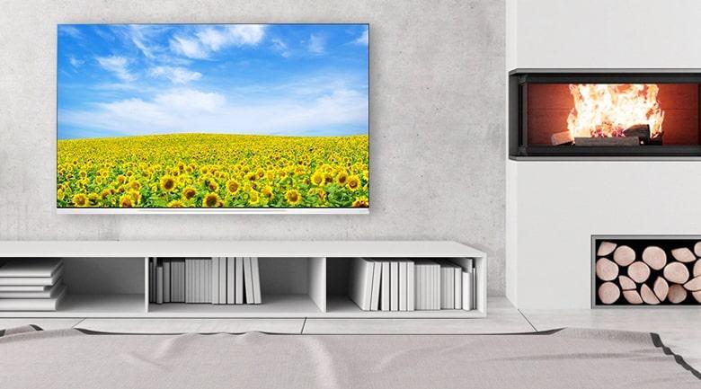 Tivi OLED LG 65E9PTA thiết kế sang trọng