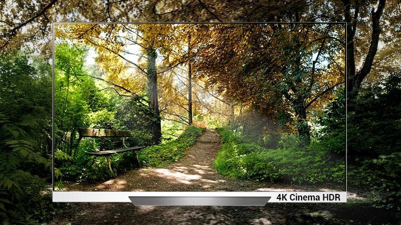 công nghệ 4K Cinema HDR trên Tivi OLED LG 65E8PTA
