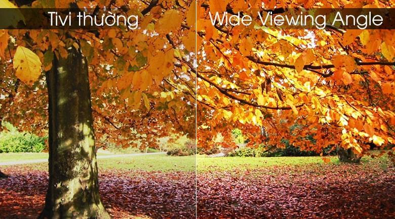 wide Viewing Angle trên Tivi LG 75UK6500PTB