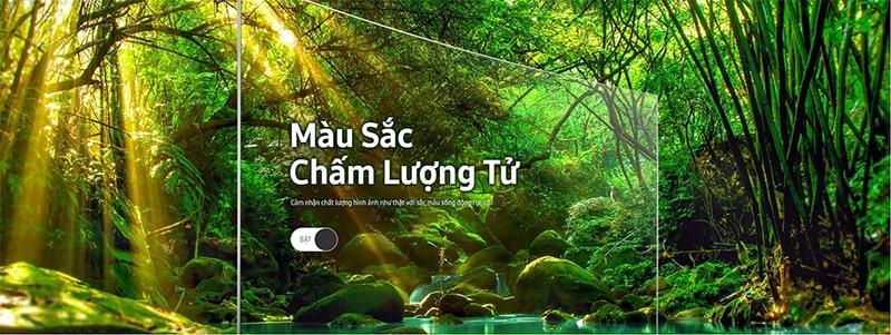 Tivi QLED Samsung QA55Q7FN