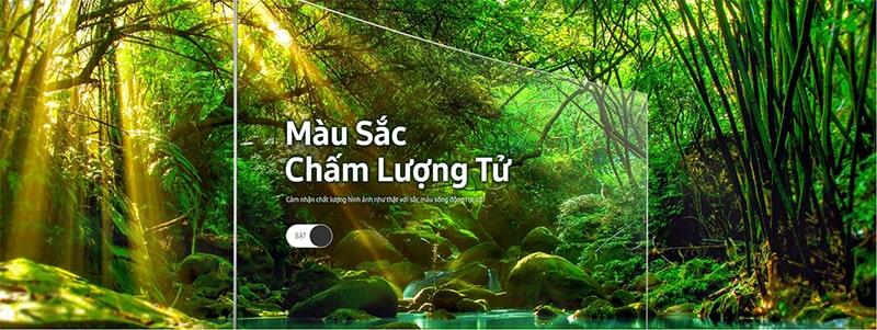 Tivi QLED Samsung QA55Q8CN