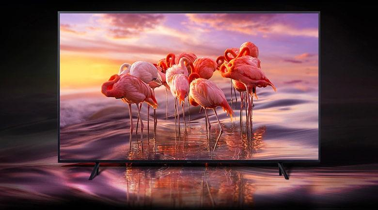 Smart Tivi QLED Samsung 4K 75 inch QA75Q65R