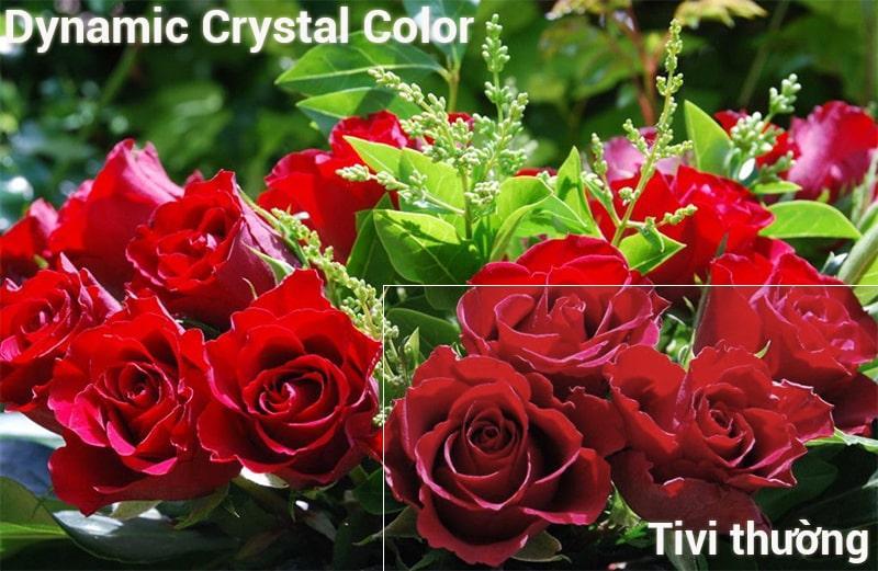 Công nghệ Dynamic Crystal
