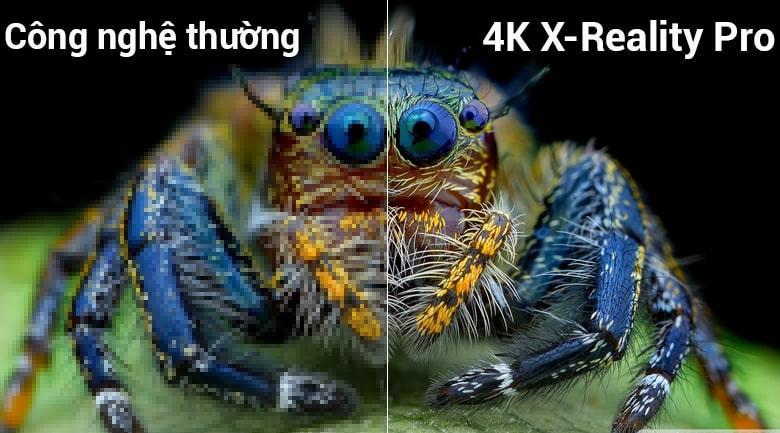hình ảnh chân thật với công nghệ 4K X-REAKITY PRO