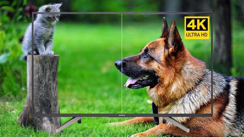 Tivi Sony KD-55X7500F cho hình ảnh sắc nét