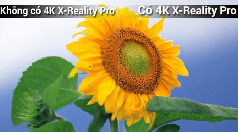 Tivi Sony KD-65X7000F cho màu sắc tươi tắn