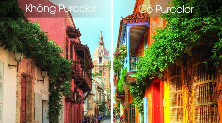 màu sắc rực rỡ với công nghệ Purcolor
