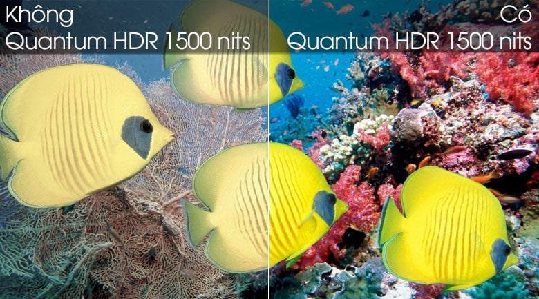 Công nghệ Quantum HDR 1500 nits cho độ tương phải vượt trội