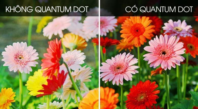 Sở hữu công nghệ chấm lượng tử Quantum Dot (QLED) cho dải màu vô cùng tự nhiên