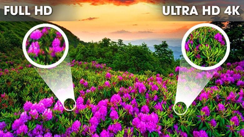 độ phân giải Ultra HD 4K rất sắc nét