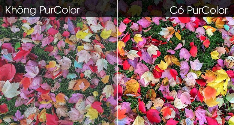 Tivi Samsung UA50TU7000 cho màu sắc sống động