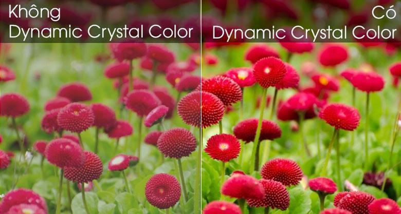 Công nghệ Dynamic Crystal Color tái hiện lại màu sắc chân thực