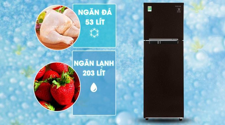Tủ lạnh Samsung RT25M4032BY/SV có dung tích 256 lít thích hợp với gia đình trẻ