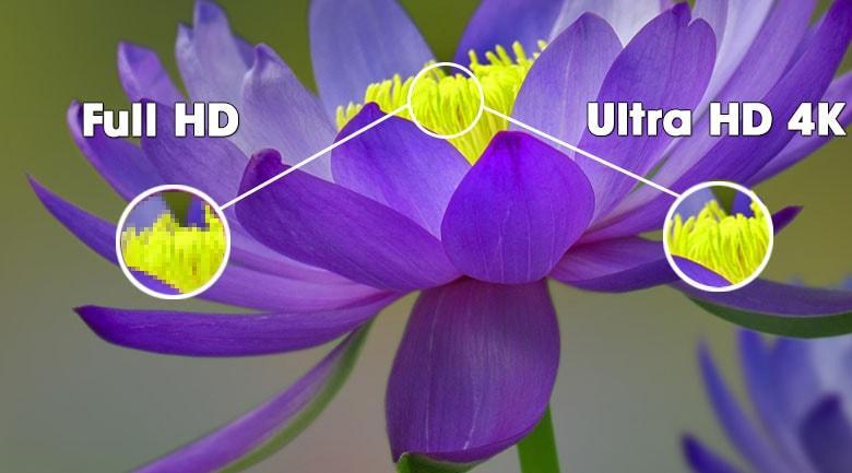 Mang đến màn hình với độ phân giải Ultra HD 4K siêu sắc nét