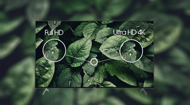 55X9000H hiển thị hình ảnh sắc nét với độ phân giải 4K