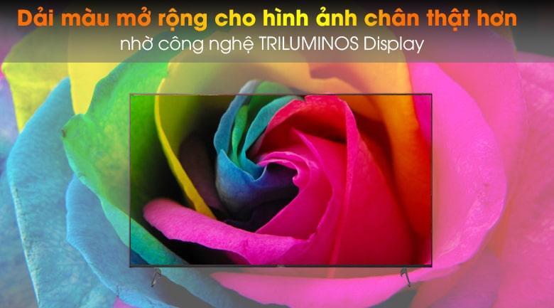 65X9000H/S cho dải màu mở rộng cho hình ảnh chân thật nhờ công nghệ TRILUMINOS Display