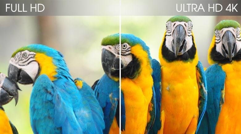 43Q65T độ phân giải 4K cho hình ảnh sắc nét hơn