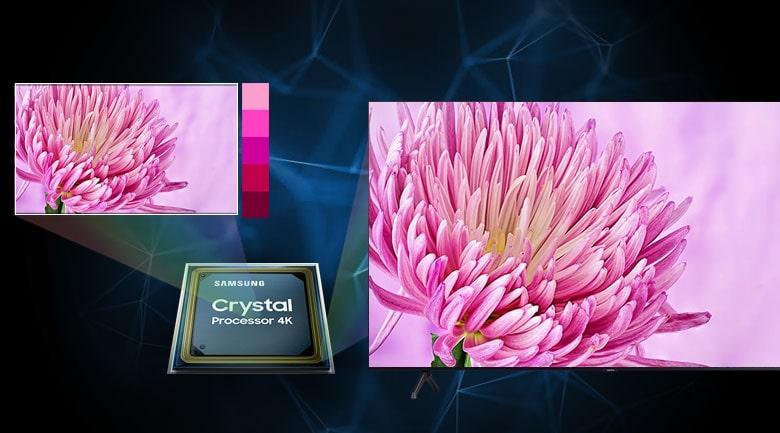 75TU7000 hiện thị màu sắc rực rỡ với chip Crystal Processor 4K