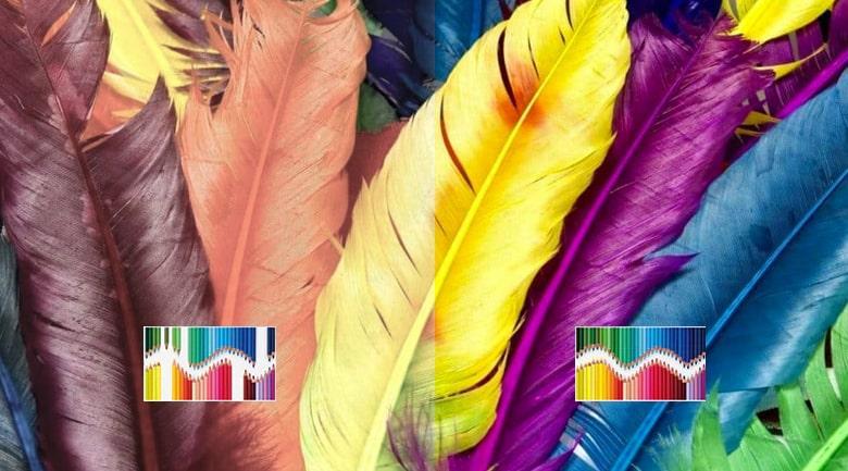 tái hiện màu sắc rực rỡ hơn với công nghệ TRILUMINOS Display