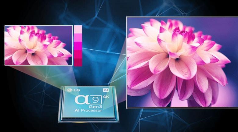 trang bị chip xử lý alpha 9 gen 3 cho hình ảnh và màu sắc chính xác hơn