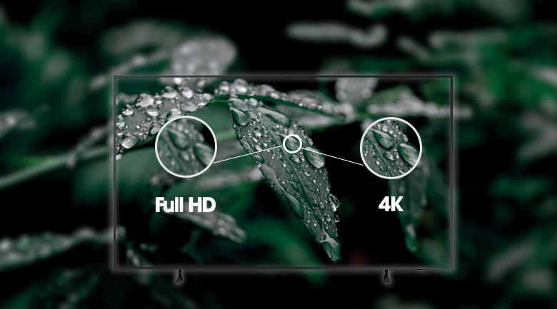 Tivi Samsung QA50LS03A với độ phân giải 4K cho hình ảnh rõ nét và chi tiết gấp 4 lần tivi thông thường