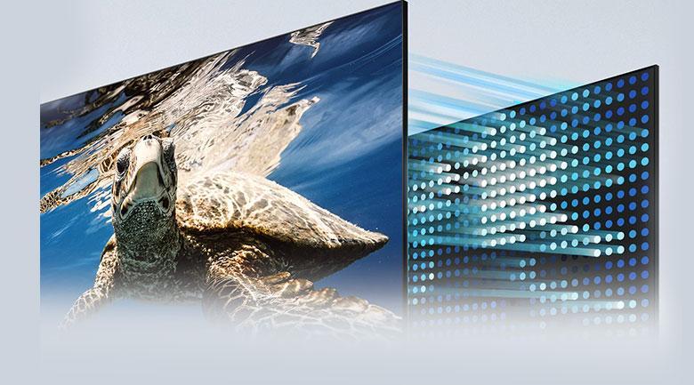 Tivi Samsung QA 50Q80A với công nghệ đèn nền Direct Full Array 8X tối ưu hoá màu đen và trắng tuyệt đối