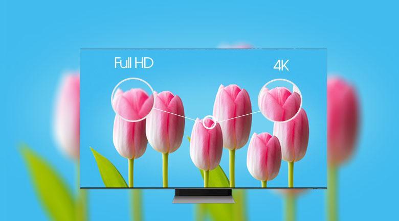 Tivi Samsung Neo QLED QA50QN90A cho hình ảnh siêu sắc nét nhờ độ phân giải 4K
