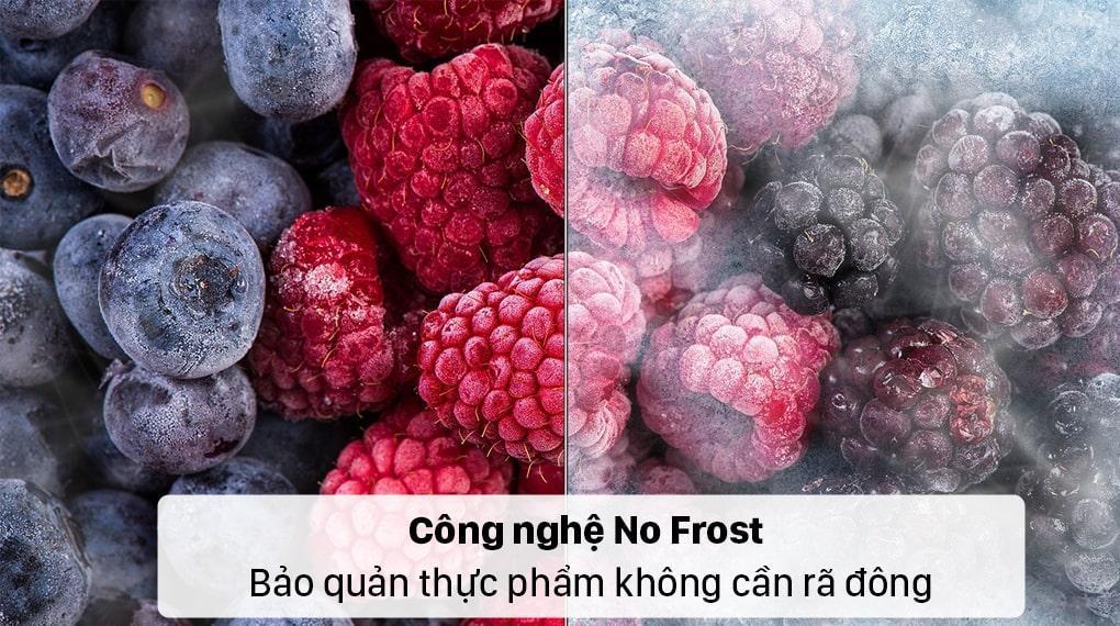 Tủ lạnh Samsung RF48A4010B4 công nghệ No Frost bảo quản thực phẩm không cần rã đông