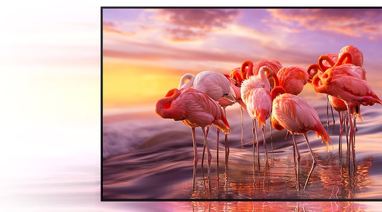 Tivi Samsung QA55QN700A màu sắc rực rỡ