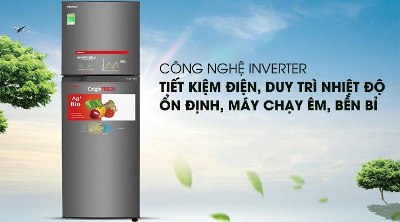 Tủ lạnh Toshiba 233 Lít 2 cửa Inverter GR-A28VS (DS1)
